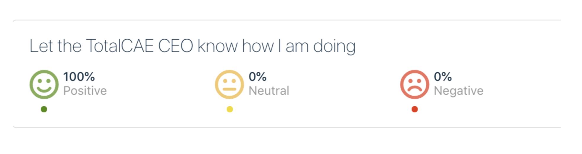 TotalCAE Client Satisfaction